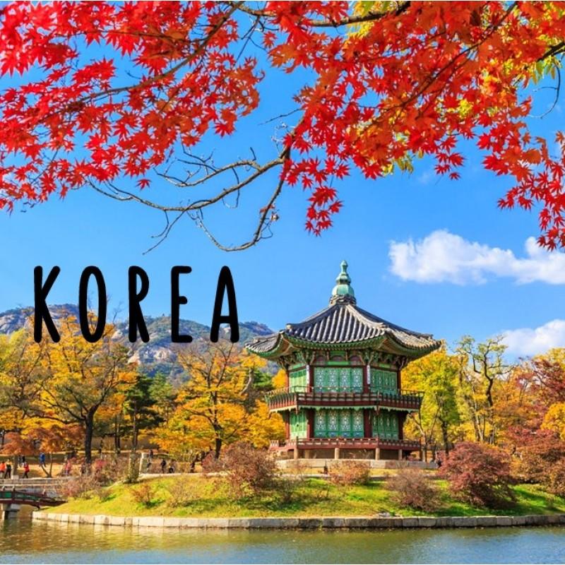 5 DAYS 4 NIGHTS BUSAN KOREA