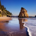 4 DAYS 3 NIGHTS FIT NORTH ISLAND TOUR NEW ZEALAND