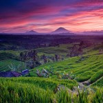4 Days 3 Nights Bali Experience ( 4 Star Hotel )